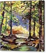 Spring In Woods Canvas Print