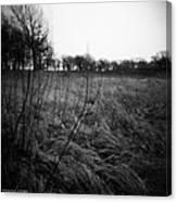 Spring Is Near Holga Photography Canvas Print