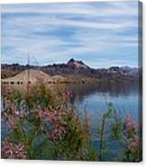 Spring Lake Mohave Canvas Print