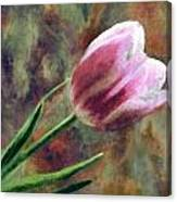 Spring Love Xvii Canvas Print