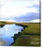 Spring Marsh Canvas Print