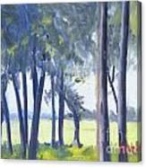 Spring Marsh From Deerfield Road Canvas Print