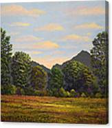 Spring Meadow At Sutter Buttes Canvas Print