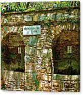 Spring Near Shrine To Mary-meryem Ana Evi-turkey Canvas Print