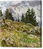 Spring On A Northern Slope Canvas Print