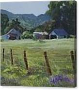Spring Pasture Canvas Print