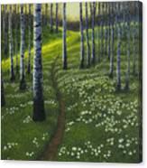Spring Path Canvas Print