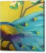 Spring Peacock Canvas Print