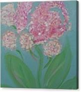 Spring Pink Flowers 1 Canvas Print