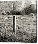 Spring Post And Bale In Black N White Canvas Print