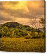 Spring Rain - White Mountains -maine Canvas Print