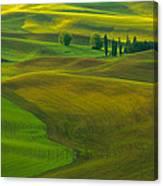 Spring Rays Canvas Print