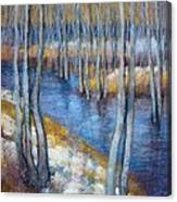 Spring River Thaw Canvas Print