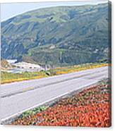 Spring, Route 1, California Coast Canvas Print