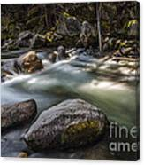 Spring Runoff Canvas Print