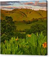 Spring Scene At Round Valley Canvas Print
