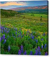 Spring Storm Passing Canvas Print