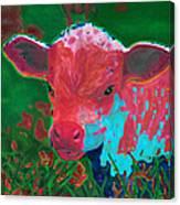 Spring Sunrise Canvas Print