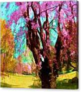 Spring Tree V Canvas Print