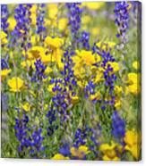 Spring Wildflower Bouquet  Canvas Print