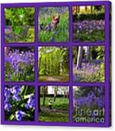 Spring Woodland Picture Window Canvas Print