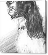 Springer Spaniel Playing Fetch Pencil Portrait Canvas Print