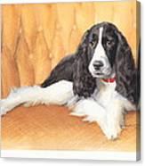 Springer Spaniel Watercolor Portrait Canvas Print