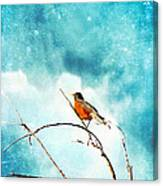 Spring's First Robin Canvas Print