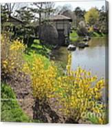 Springtime At The Japanese Gardens Canvas Print