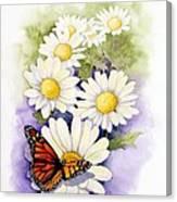 Springtime Daisies  Canvas Print