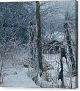 Springtime Icestorm Canvas Print