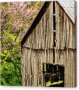 Springtime In Kentucky Canvas Print