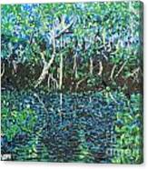 Springtime In Wekiva Canvas Print