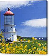 Springtime Lighthouse Canvas Print
