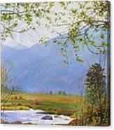 Springtime Moraine Park Canvas Print