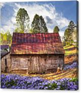 Springtime On The Farm Canvas Print