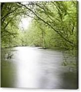 Springtime River Canvas Print