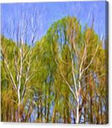 Springtime Trees Canvas Print