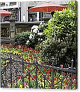 Springtime Tulips In Cologne Germany Canvas Print