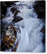 Springtime Waterfall Canvas Print