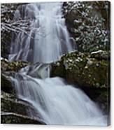 Spruce Flats Falls IIi Canvas Print