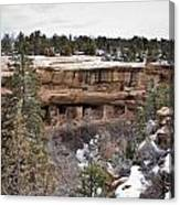Spruce Tree Cliff Dwelling Canyon Canvas Print