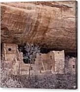 Spruce Tree Cliff Dwelling Canvas Print