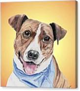 Spunky Former Shelter Sweetie Canvas Print