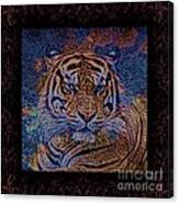 Sq Tiger Sat 6k X 6k Cranberry Wd2 Canvas Print