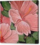 Square Foot Hibiscus Canvas Print