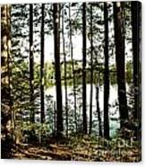 Square North Woods Lake Canvas Print