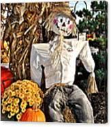 Square Scarecrow Canvas Print