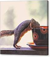 Squirrel And Coffee Canvas Print