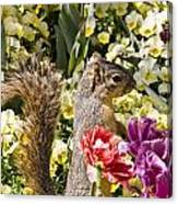 Squirrel In The Botanic Garden-dallas Arboretum V4 Canvas Print